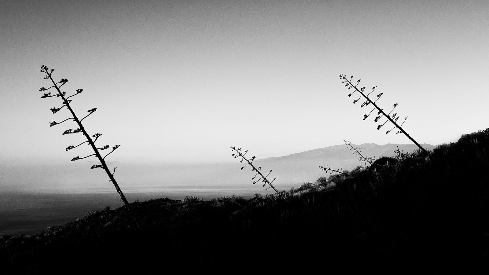 Tenerife I - Anaga Mountains - Fine Art Black & White Photography