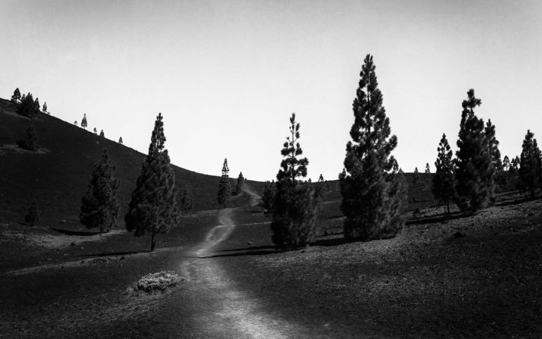 Tenerife - Teide - Black & White Fine Art Photography Series